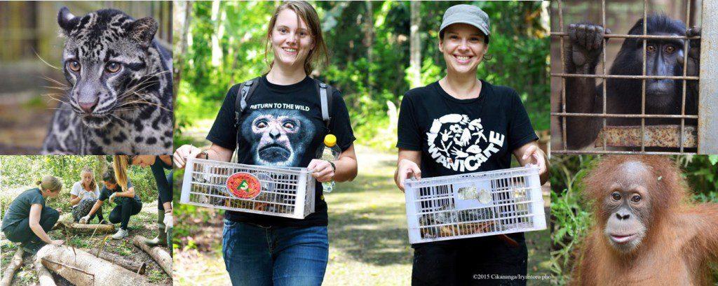 Volunteers vrijwilligerswerk vrijwilligers indonesie wanicare java 4