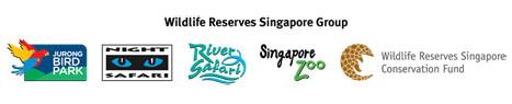 singapore zoo copy