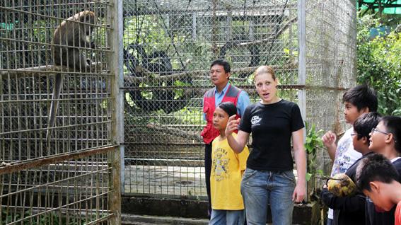 Animal park tour
