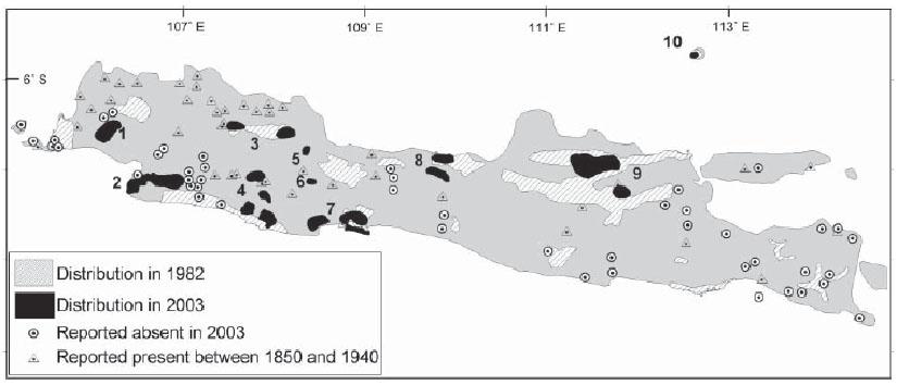 The distribution of Sus verrucosus between 1850 to 2003 (Semiadi & Meijaard 2006).