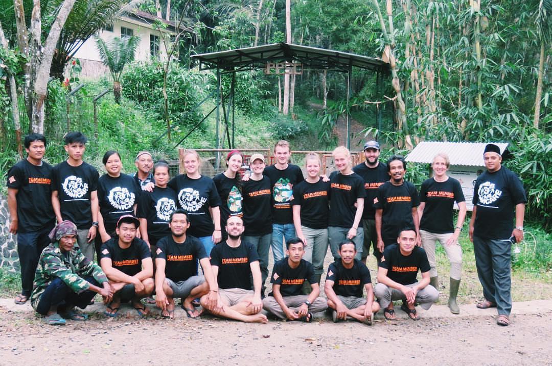 wildlife-rescue-volunteer-intern