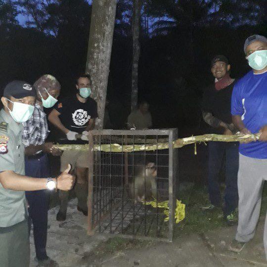 Rescue VI CIkananga Wanicare
